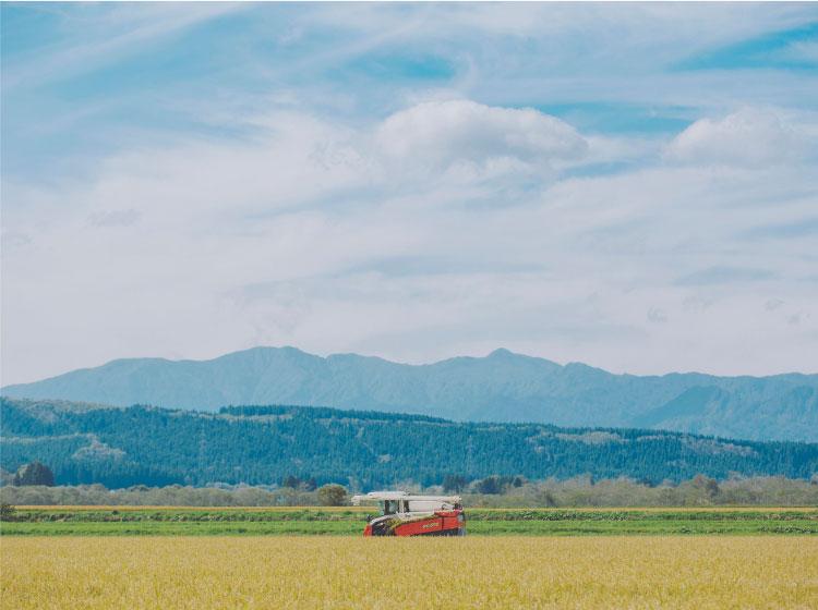 帰山農園 お米農家
